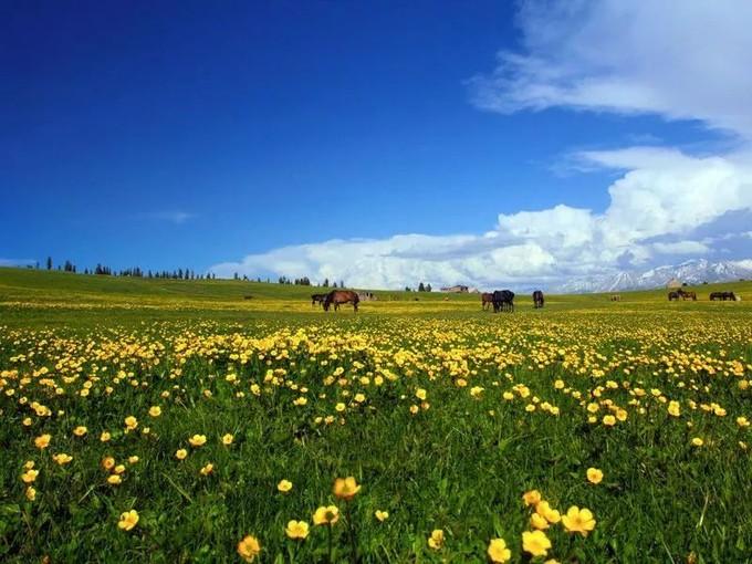 新疆旅行攻略~~~ 13個回答幫你解决所有的新疆旅行問題&攻略