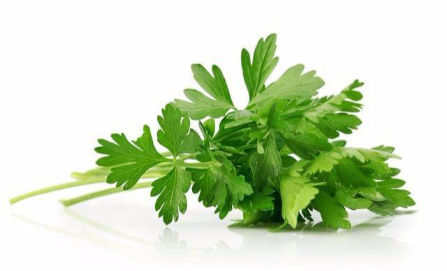 """[新聞] 吃芹菜可以降血壓?錯!醫生説:有一種芹菜吃了反而會""""中毒"""""""